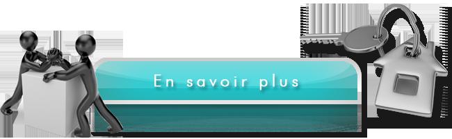 Médiateur sur Décines-Charpieu