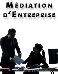 mediateur d'entreprise sur Jullié